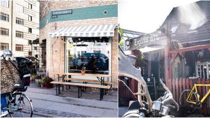 Fovl på Frederikssundsvej blev i 2017 kåret som årets cafe. Lygtens Kro er et andet af områdets trækplastre for unge mennesker.