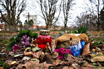 ARKIVFOTO 2016 af Elverparken i Herlev, hvor 32-årige Louise Borglit blev fundet dræbt- - Se RB 6/2 2017 11.38. Dusør har kun givet få tip om drab på gravid i Herlev. 32-årige Louise Borglit blev stukket ned og dræbt, da hun luftede sin hund i park.. (Foto: Jens Nørgaard Larsen/Scanpix 2017)