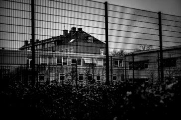 Tranegårdskolen er en en populær skole i Hellerup i Gentofte Kommune. Nu retter en gruppe forældre kritik af skoledelsen for ikke at handle tilstrækkeligt på voldsom adfærd i indskolingen.