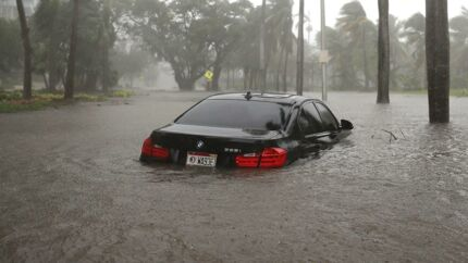 Miami Florida under orkanen Irma Joe Raedle/Getty Images/AFP