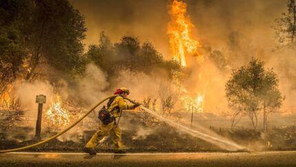 En californisk brandmand kæmper 28. juli mod en af de skovbrande, der i øjeblikket hærger den amerikanske stat, efter at varme, tørke og vind har gjort brandslukningsarbejdet mere kompliceret.